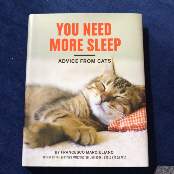 """Other - """"You Need More Sleep - Advice From Cats"""""""